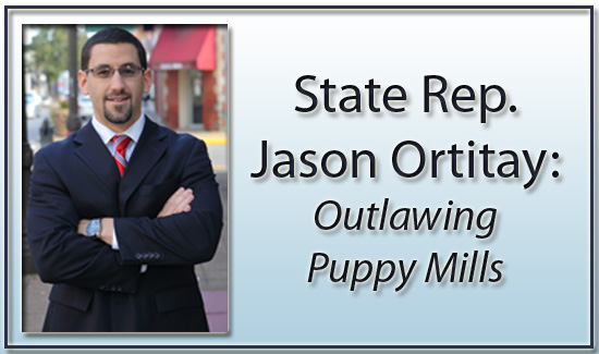 Cracking Down on Puppy Mills on Lincoln Radio Journal
